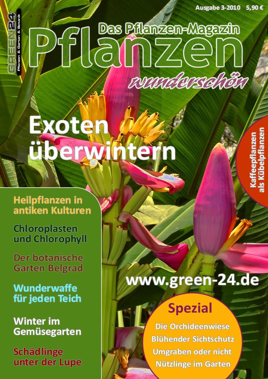 Die Pflanzen Zeitung Pflanzen wunderschön Ein Pflanzen Magazin